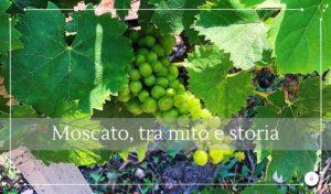 Il Moscato di Siracusa, esperienza di gusto tra mito e storia - Cantine Gulino