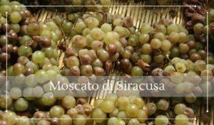 Vini da dessert il Moscato di Siracusa - Cantine Gulino