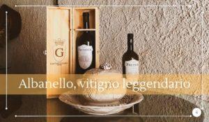 Alla scoperta dei vitigni autoctoni siciliani l'Albanello