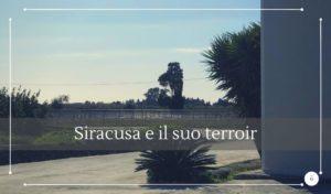 Vini tipici siciliani Siracusa e il suo territorio - Cantine Gulino