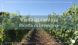Visita in cantina e degustazioni di vini Siracusa - Cantine Gulino