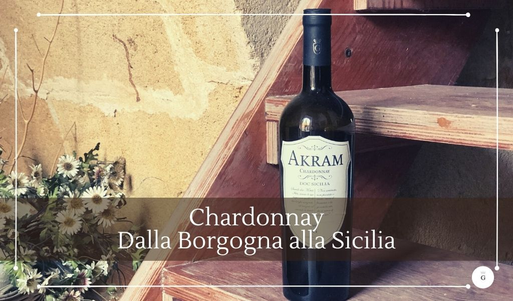 Il vitigno Chardonnay declinato nel vino bianco Chardonnay Akram - Cantine Gulino