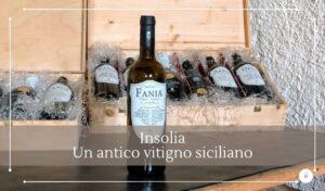 Inzolia uno dei più antichi vitigni della Sicilia - Cantine Gulino