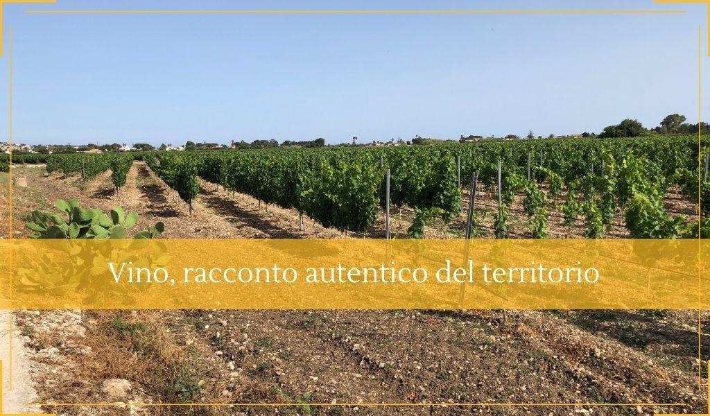 Degustazioni vino sicilia racconto puro e autentico del territorio - Cantine Gulino
