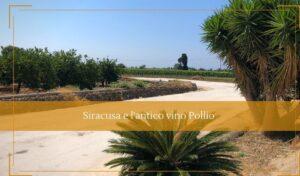 Vini tipici siciliani Sairacusa e l'antico vino Pollio - Cantine Gulino